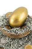 Golden Nest Egg Closeup Royalty Free Stock Photo