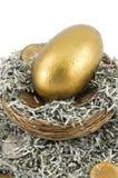 Golden Nest Egg Closeup. Golden egg sits in nest amongst shredded US paper bills and US dollar coins Royalty Free Stock Photo