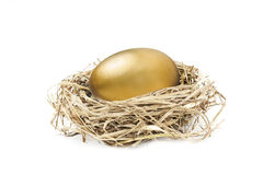Golden nest egg isolated on white Royalty Free Stock Images
