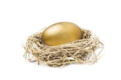 Golden nest egg isolated on white. Big golden nest egg isolated on white background Royalty Free Stock Images