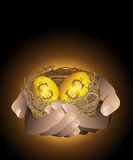 Golden nest eggs in hand. Golden eggs in nest holding with hands. And gold eggs with dollar sign.Concept of business success.Vector file Royalty Free Stock Images