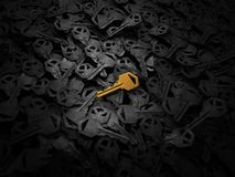 Golden new key Royalty Free Stock Image