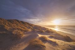 Golden north sea coastline in Denmark royalty free stock images