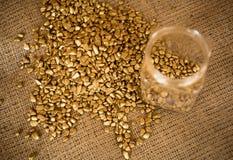Golden nuggets and empty bullion lying on burlap Royalty Free Stock Photos