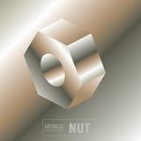 Golden nut Stock Photos