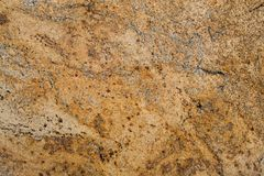 Golden old stone texture Stock Image