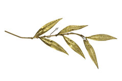 Golden olive twig Stock Photography