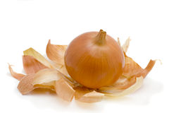 Golden onion. Large golden onion isolated on the white Royalty Free Stock Images