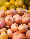 Golden onion close up on counter Royalty Free Stock Image