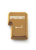 Golden opportunity Royalty Free Stock Image