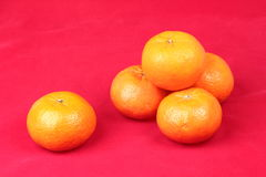 Golden orange on red background, to celebrate for Chinese festiv Stock Photography