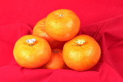 Golden orange with silver and gold of silver ingots . Stock Photography