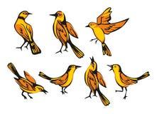 Golden Oriole isolated on white background. Set sitting and flying bird. Vector flat illustration Stock Photo