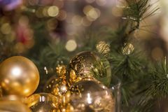 Golden ornament in christmas tree Stock Photo