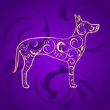 Golden Ornamental Dog Great Dane Silhouette on Purple. Great dane dog ornamented with gold Stock Image