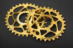 Golden oval bicycle chainring Stock Image