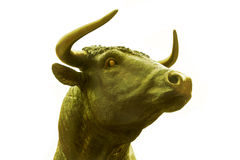 Golden ox Royalty Free Stock Photography