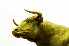 Golden ox Royalty Free Stock Photo