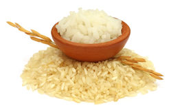 Golden paddy seeds with rice raw and cooked Stock Photography