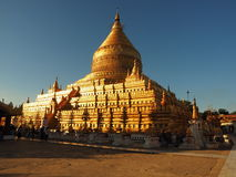 Golden pagoda in bathing in the sunlight Stock Photos
