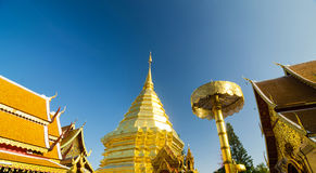 Golden pagoda, Chaing mai, Thailand Royalty Free Stock Images