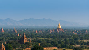 Golden pagoda field in Bagan, Myanmar Stock Images
