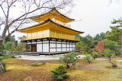 Golden pagoda and park in autumn at Kinkakuji Temple, Kyoto, Jap Royalty Free Stock Photos