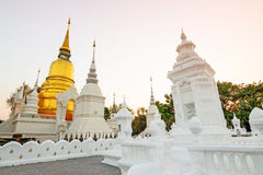 The golden pagoda at Suan Dok Temple. Chiang mai, Thailand. Royalty Free Stock Photos