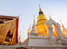 The golden pagoda at Suan Dok Temple. Chiang mai, Thailand. Stock Photography