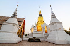 The golden pagoda at Suan Dok Temple. Chiang mai, Thailand. Stock Images