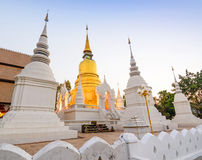 The golden pagoda at Suan Dok Temple. Chiang mai, Thailand. Royalty Free Stock Photography