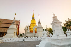The golden pagoda at Suan Dok Temple. Chiang mai, Thailand. Stock Image