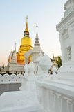 The golden pagoda at Suan Dok Temple. Chiang mai, Thailand. Royalty Free Stock Photo