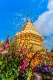 Golden pagoda in wat Phrathat Doi Suthep  Chiang Mai. Golden pagoda in wat Phrathat Doi Suthep under blue sky.Temple is tourist attraction of Chiang Mai Royalty Free Stock Photography