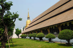 Golden pagoda in wat suan dok temple, chiang mai Stock Images