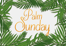 Golden Palm Sunday Text with Branches Around it, Vector Illustration stock image