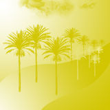 Golden palm trees Stock Image