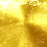 Golden panel. With some highlights and shades on it Royalty Free Stock Image