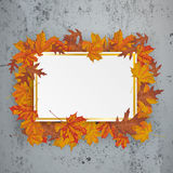 Golden Paper Board Autumn Foliage Concrete Royalty Free Stock Images