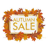 Golden Paper Board Autumn Foliage Sale Stock Image