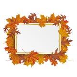 Golden Paper Board Autumn Foliage Stock Photo