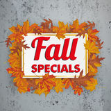 Golden Paper Board Fall Specials Foliage Concrete. Fall Specials, paper board with foliage on the conrete Royalty Free Stock Images