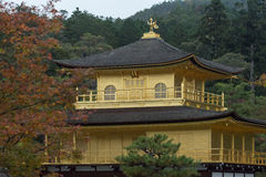 The Golden Pavilion (Kinkaku-ji) of Kyoto Royalty Free Stock Images