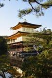 Golden Pavilion Kinkaku-ji Royalty Free Stock Photos