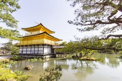 Golden Pavilion Kinkakuji Temple in Kyoto Japan royalty free stock image