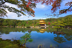 Golden Pavilion or Kinkakuji Temple at autumn, Kyoto Stock Images