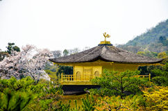 Golden Pavilion Kinkakuji Temple at Japan Stock Image