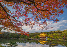 Golden Pavilion Kinkakuji Temple Royalty Free Stock Photo