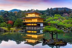 The Golden Pavilion. Kinkakuji Temple in Kyoto, Japan Royalty Free Stock Images