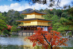 Golden Pavilion at Kinkakuji Temple with red leaves in Autumn se Stock Photos